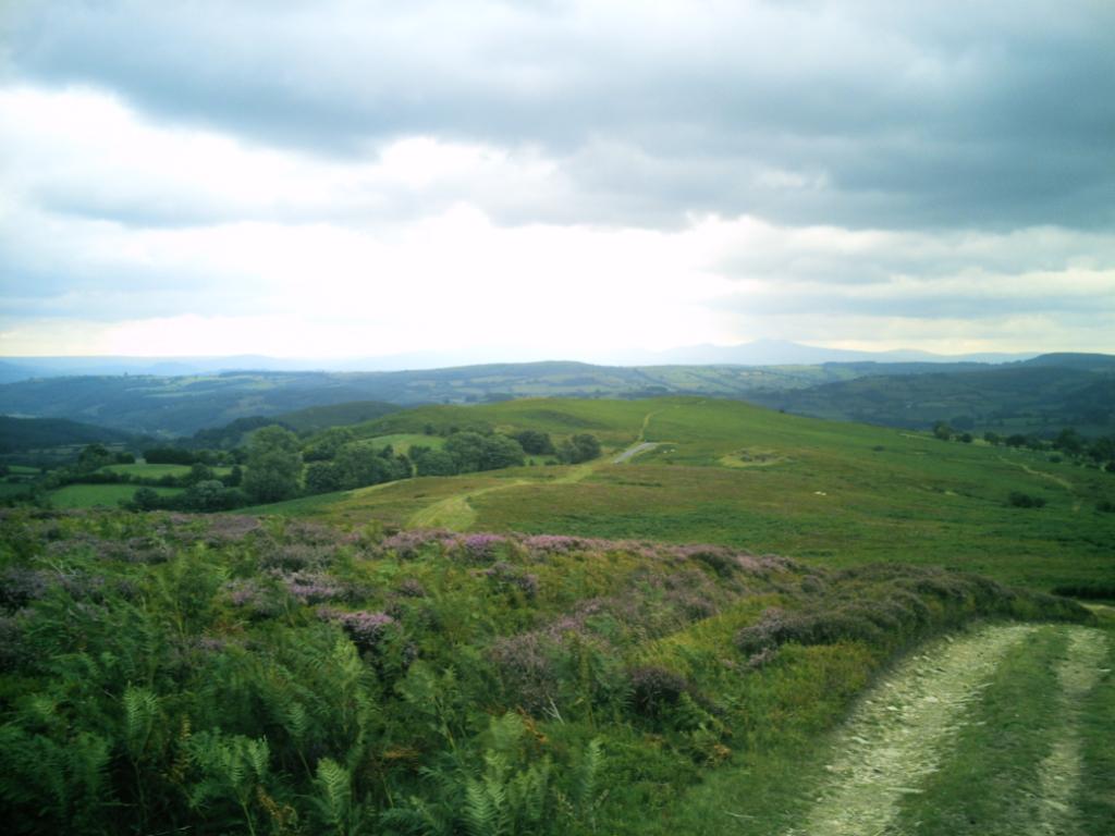 Powys photo by Sue Glenn